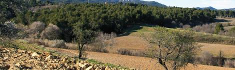 El Vallès agroforestal